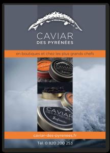 Encart pub magazine caviar des Pyrénées - atelier disegno