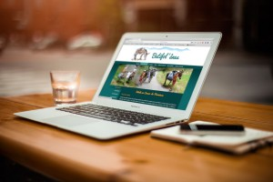 Site web de Batifol'ânes